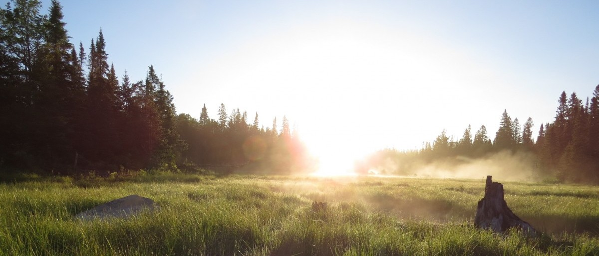 Permalink to: Provincially Significant Wetland at Sunrise